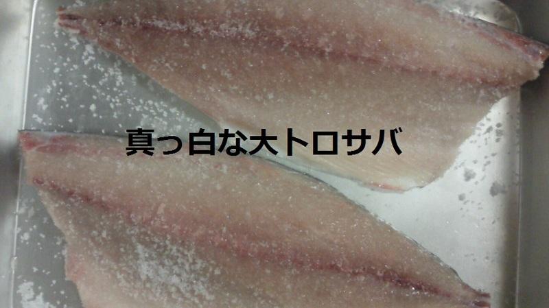 Nec_0580