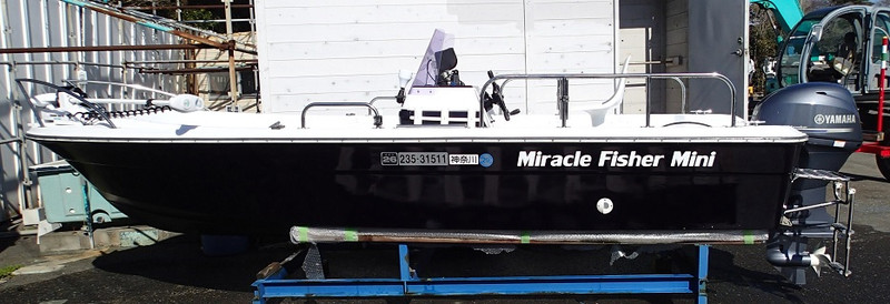 Miracle_fisher_mini_1